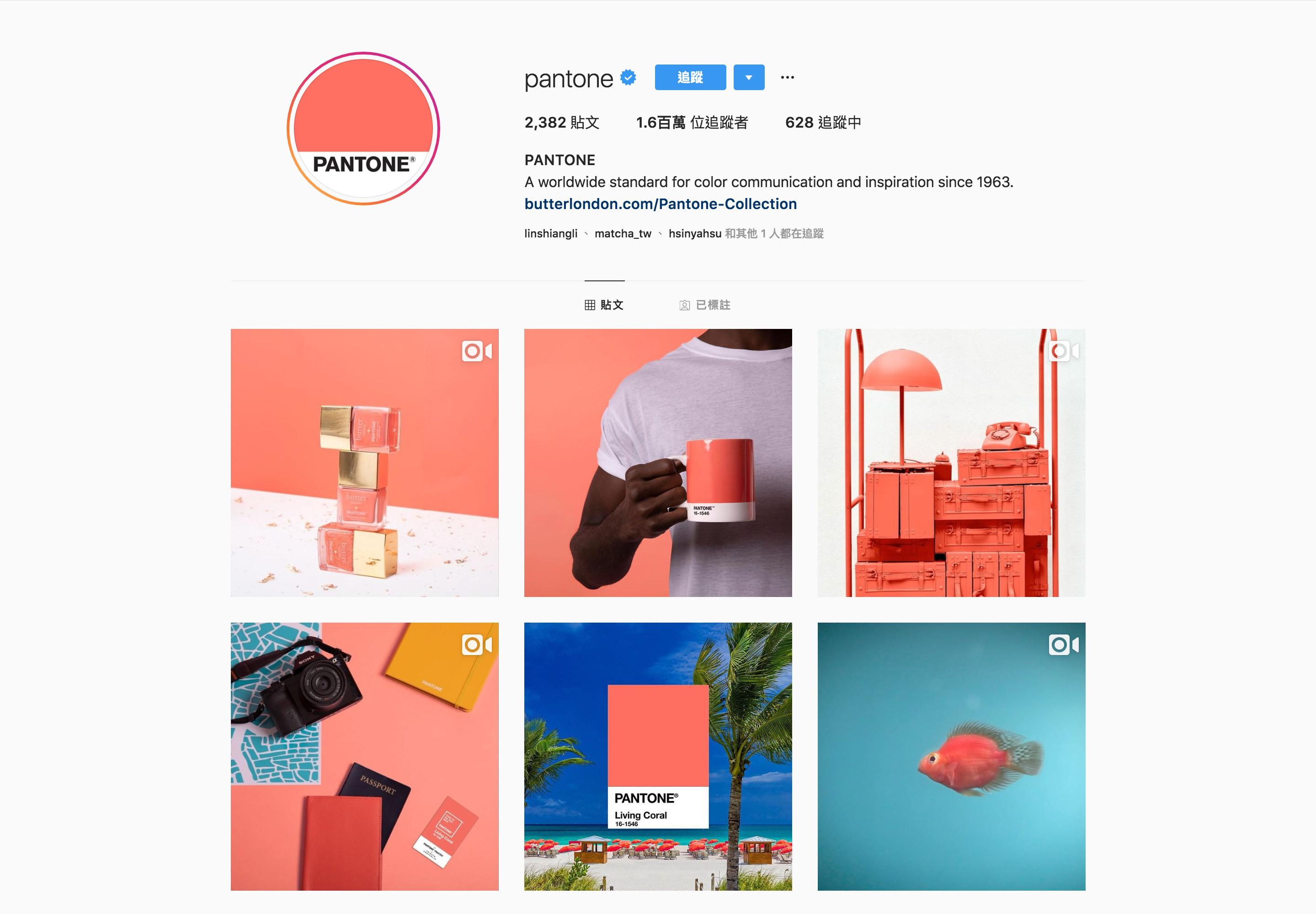 2019 Pantone品牌經營流行顏色運用-鯊客科技